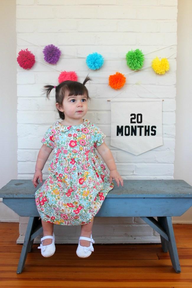 20 Months - Carm 8
