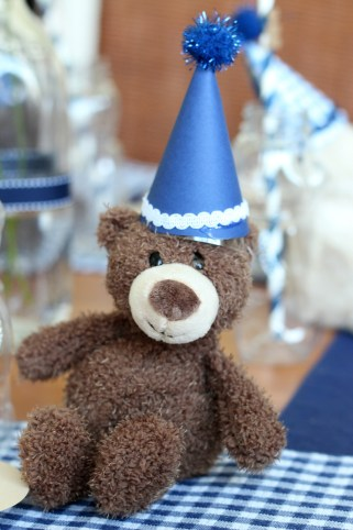 teddy with party hat