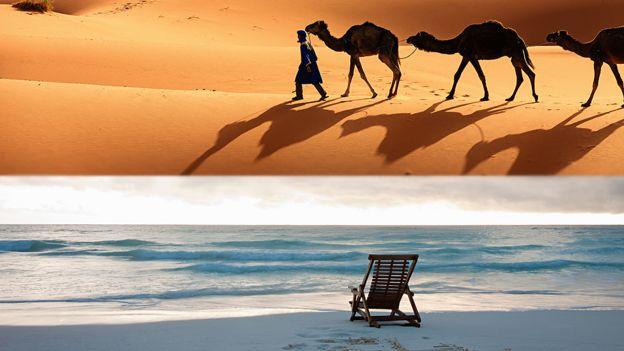 Playa y desierto