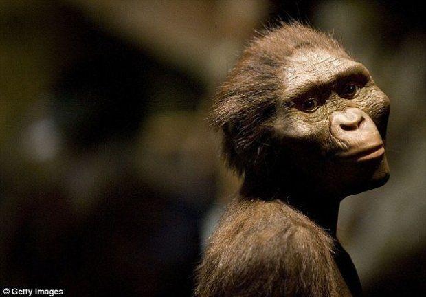 Little Foot a été trouvé dans un réseau de grottes au nord-ouest de Johannesburg, baptisé le berceau de l'humanité.