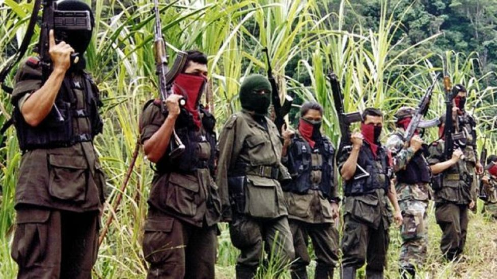 Members of the Colombian National Liberation Army (ELN) stand in the mountains of Perija near the border town of Cucuta