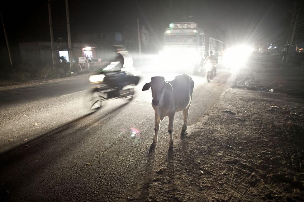 Ramgarh at night