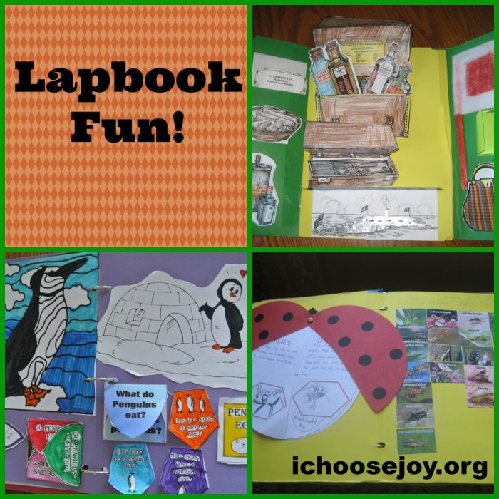 Lapbook Fun