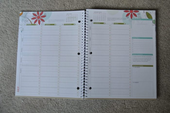 Fourth of July Well-Planned Day Planner 075