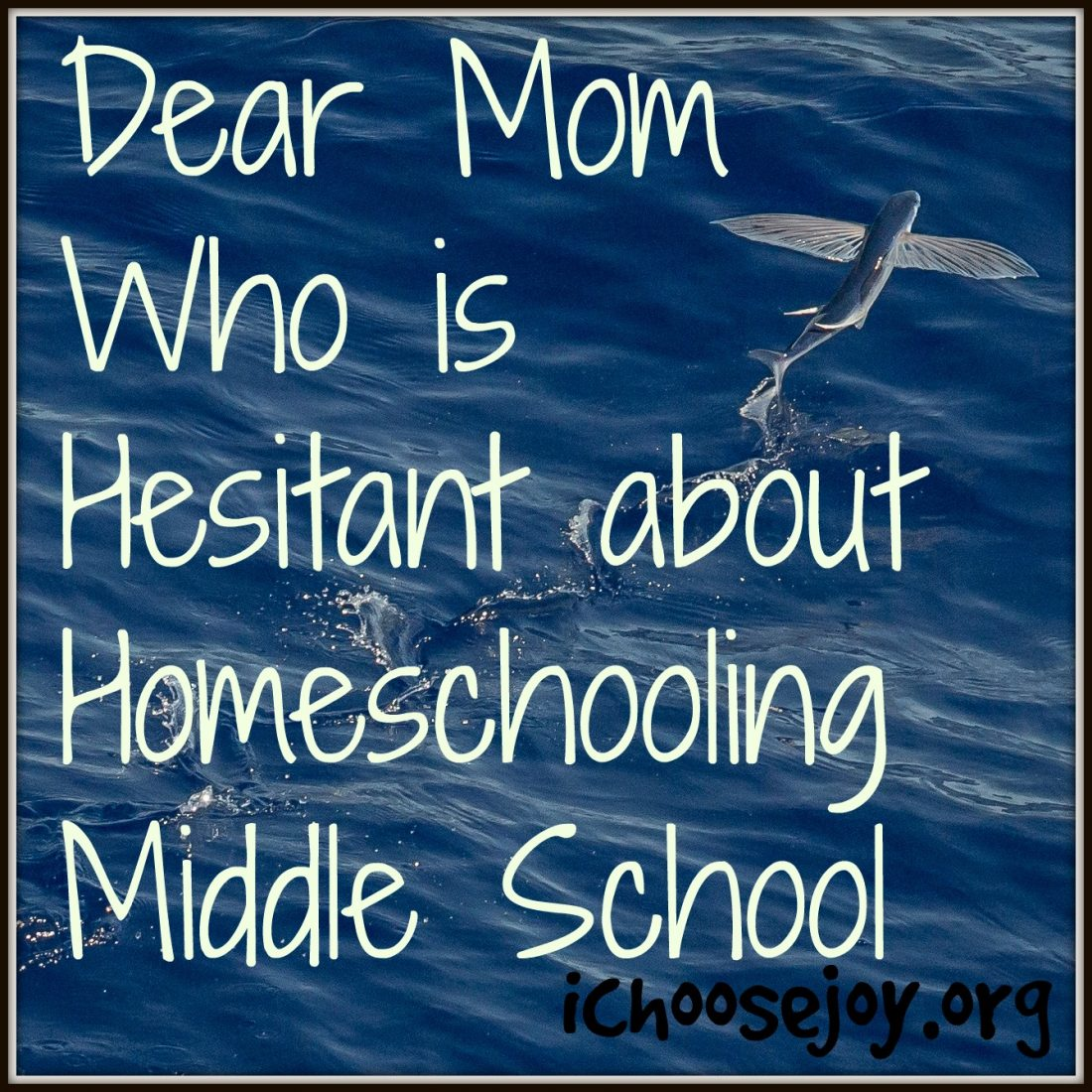 Dear Mom Who is Hesitant about Homeschooling Middle School