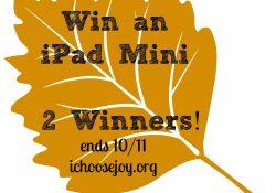 Giveaway: iPad Mini to 2 different winners!