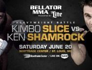Bellator MMA: Unfinished Business