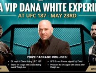 Win a Draft Kings VIP Experience at UFC 187