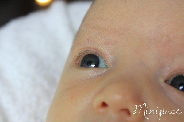 yeux-minipuce-naissance.jpg
