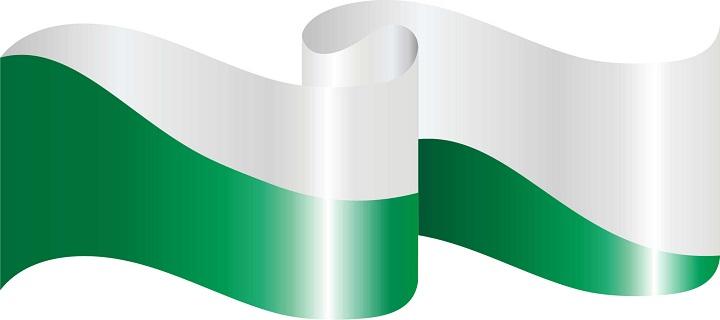 bandera_san_jos_