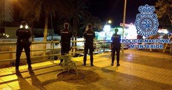 """Задержаны """"с поличным"""" четыре женщины за кражу в Playa de Las Américas"""