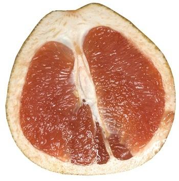 grapefruit for juice