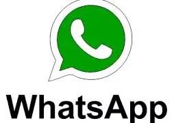 Despierta y Conecta con WhatsApp en El Canto del Gallo
