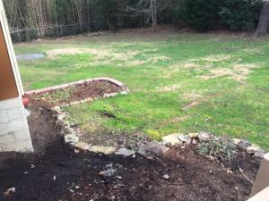 newhouse-backyard