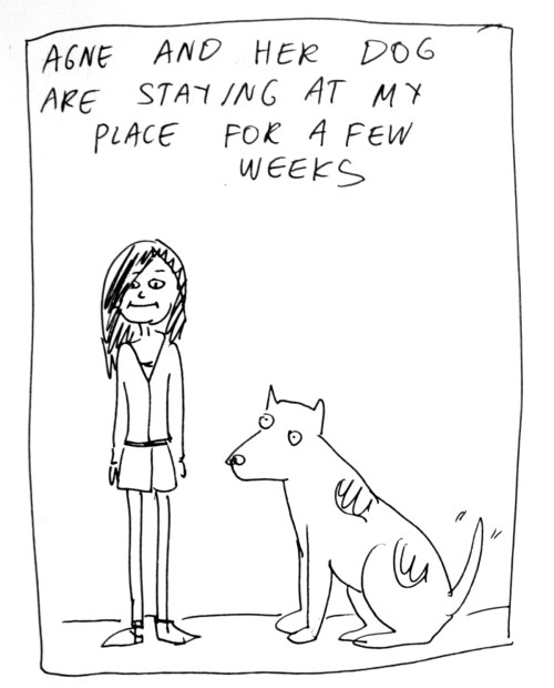 Medium Of Crazy Dog Lady