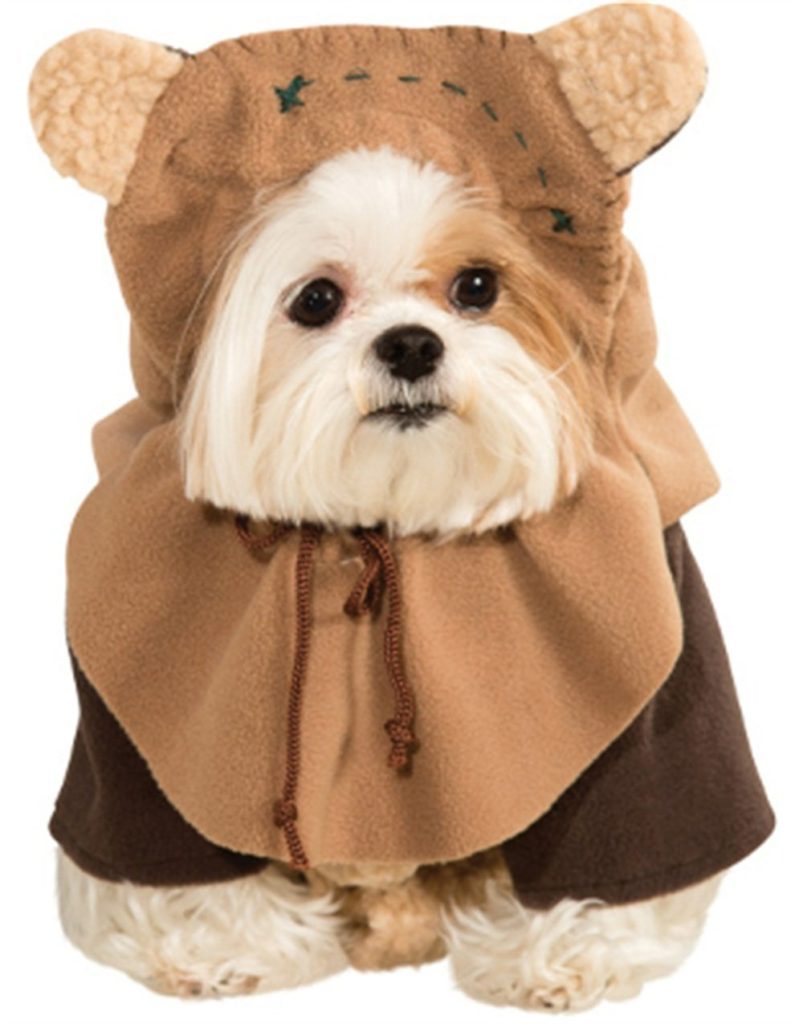 Lovely Dog Halloween Costumes Under Puppy Or Bagel Buzzfeed Puppy Bagels bark post Puppy Or Bagel