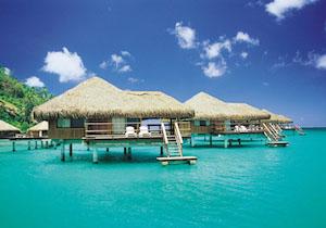 春 海外旅行 人気 ランキング おすすめ 4