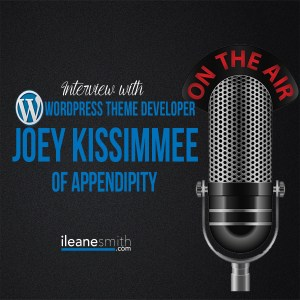 Interview with Joey Kissimmee from Appendipity Themes