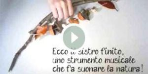 sistro video immagine