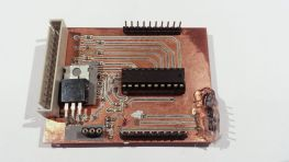 Microcontroller board with multiplexing port and voltage regulator