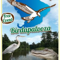 2016 Lake Apopka Wildlife Festival & Birdapalooza