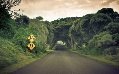 Daily Wallpaper: Nature's Tunnel | I Like To Waste My Time