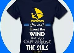 You can't direct the wind but YOU can adjust the sails.