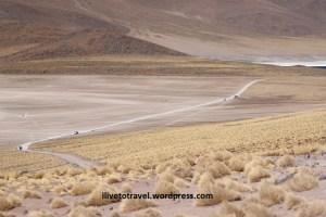 Lagunas Altiplánicas in the Atacama Desert in northern Chile