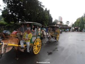 Calesa, Manila, Philippines, Intramuros, transportation, local, travel