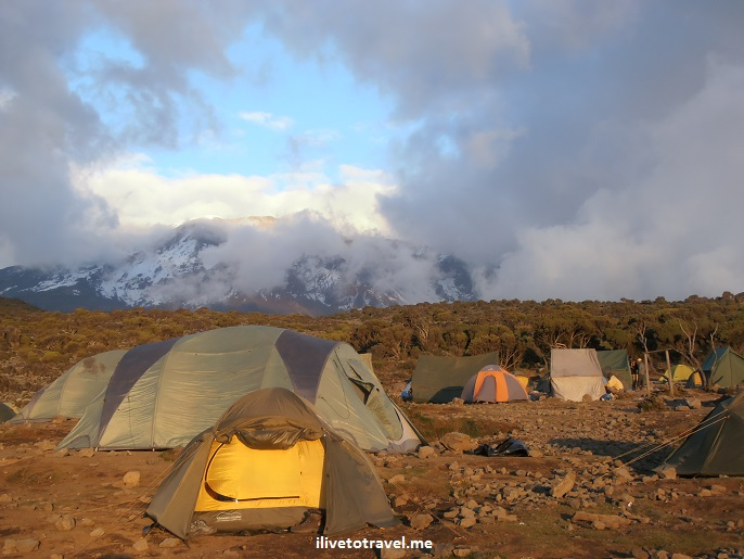 Shira Camp, Kilimanjaro, Uhuru, cimbing, hiking, photo, beauty, Olympus, Africa, Tanzania