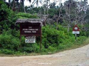 Zanzibar, Jozani, Chwaka Bay, National Park, photo, travel, Tanzania