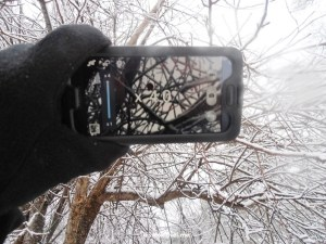 Samsung Galaxy, photo, camera, winter, snow, Atlanta, Olympus