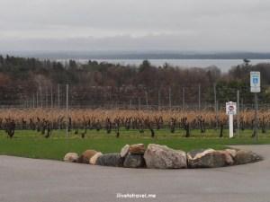 Brys, Estate, winery, vineyard, Old Mission, peninsula, Traverse City, Michigan