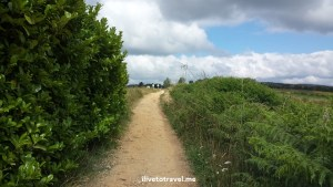 Camino de Santiago, Spain, trekking, hiking, path, Palas del Rei, Samsung