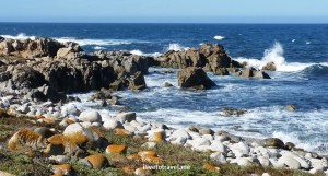 Waters along the 17-Mile drive