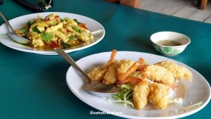 Shrimp tempura and chicken curry - delicious