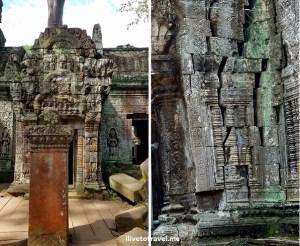 Ta Prohm, Siem Reap, Angkor Wat, Cambodia, Cambodge, travel, explore, adventure, travel, photo, Samsung Galaxy, S7