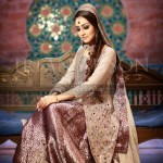 Pakistani Bridal Dresses 2015 5