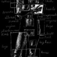 """My Body – A Wunderkammer"" by Shelley Jackson, et al."