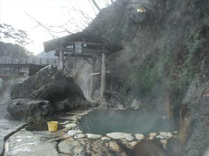 塩原温泉郷 福渡温泉 岩の湯の画像