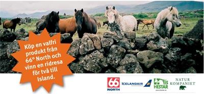 Vinn ett ridäventyr på Island