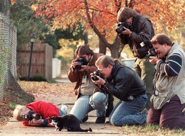 paparazzi con il gatto della Clinton