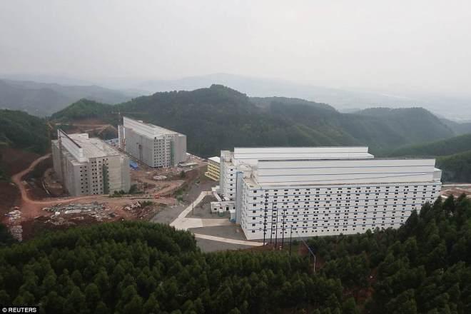 """""""Chung cư"""" cao tầng dành cho lợn ở Trung Quốc - 2"""
