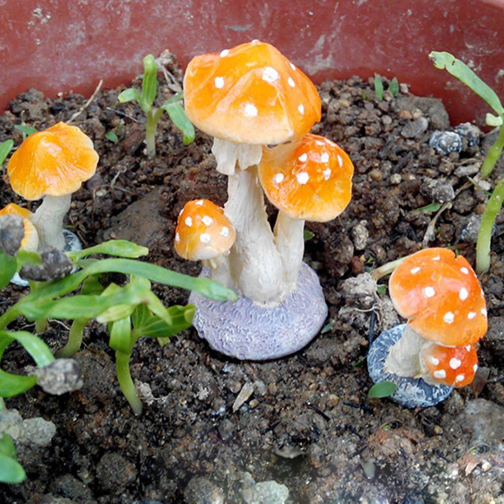Fullsize Of Mushroom Fairy Garden