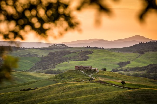 Tuscany vineyard Italy - Best wine destinations in Europe
