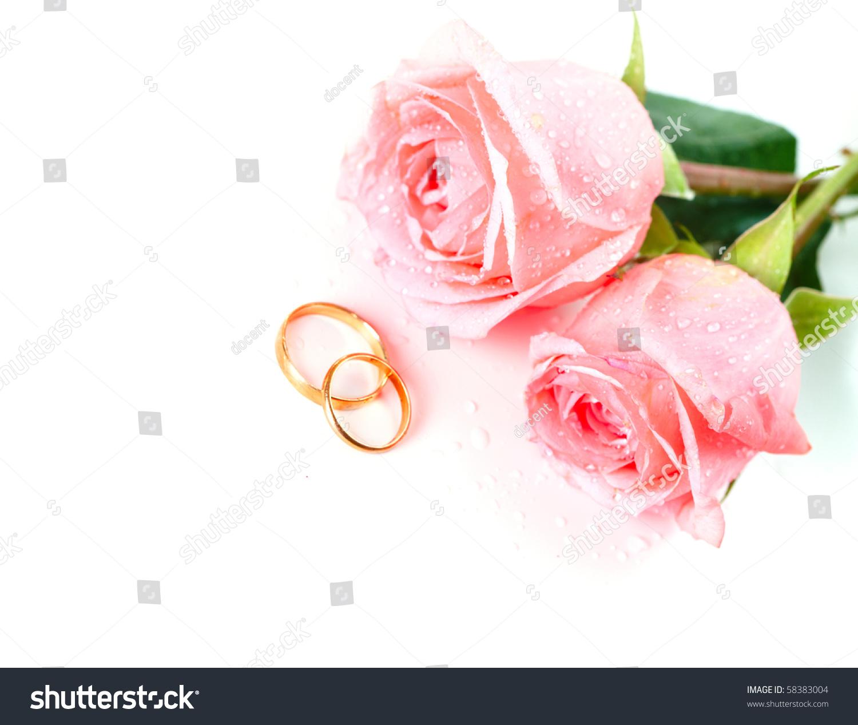 royalty free stock photo pink rose wedding rings image pink wedding rings Pink Rose Wedding rings