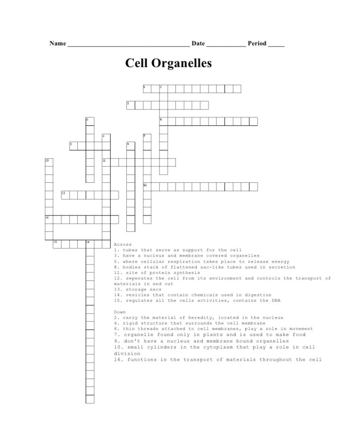 Cell organelle function review game games world biology cell organelle crossword puzzle microscope review malvernweather Images