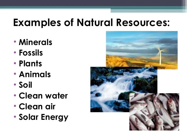 natural resources examples juve cenitdelacabrera co