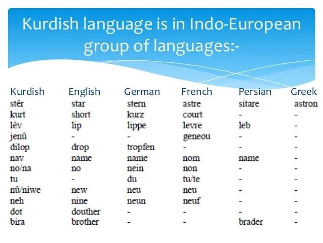 Lexical borrowing in Kurdish language