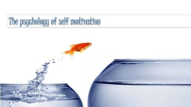 The psychology of self motivation by Scott Geller